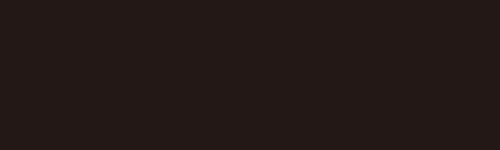 アロハシャツ−かりゆしウェア【ハイビーペイズリーボーダー(開襟シャツ) レディース】デザインポイント