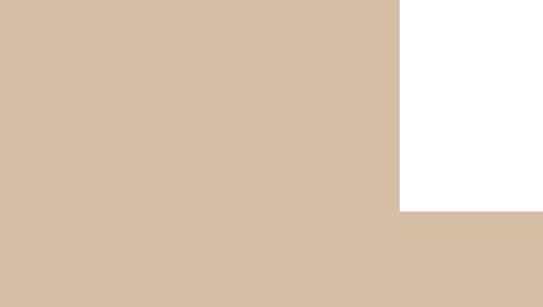 スリムフィットシャツ【ドラゴントライバル(開襟シャツ) メンズ】オフブラウン