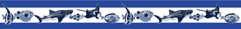 沖縄のお魚