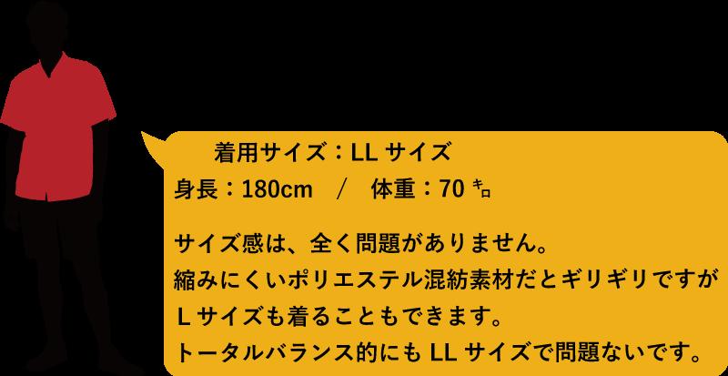 アロハシャツ メンズ173cm90kg かりゆしウェア
