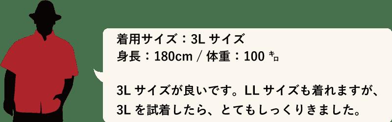 沖縄アロハシャツ メンズ180cm100kg かりゆしウェア