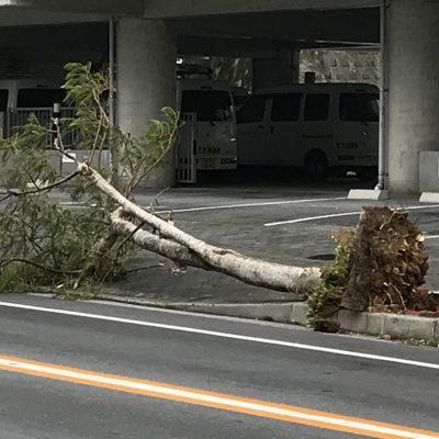 2018年 台風24号被害