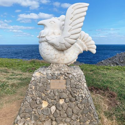 辺戸岬 鳥