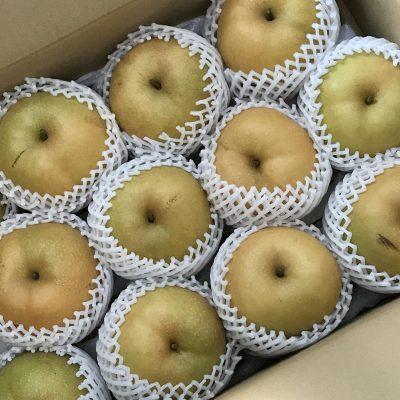 沢山の梨をいただきました